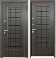 Дверь входная металлическая Snegir TS1/TS1